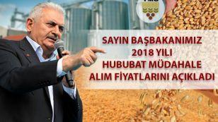 Ülkemizde 2018 yılı hasadı Mayıs ayının ilk haftası Çukurova ve Güneydoğu Anadolu Bölgesinde başlamıştır.  Türkiye genelinde hasat, bugün itibariyle buğday ve arpada %1 seviyesindedir.  Hasat başlangıcından bugüne kadar piyasalar yakından izlenmiş ve piyasaların seyrine göre TMO politikaları şekillendirilmiştir.  Bu yıl TMO tarafından hububat alımlarında izlenecek politikalar şunlardır: